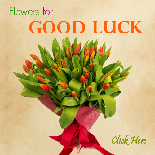 Flowers to say good luck for any occasion that fits!