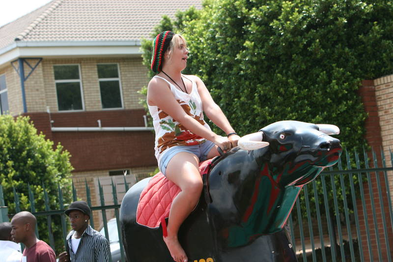 Mechanical Rodeo Bull for hire