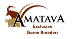 Amatava Private Game Lodge